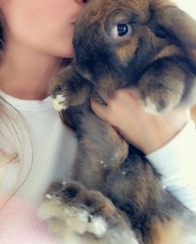gj serving some side eye #rabbitrabbit #sideeye #rabbitsofinstagram