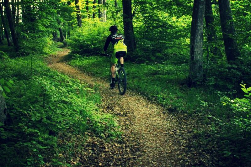 viscri cycling romania