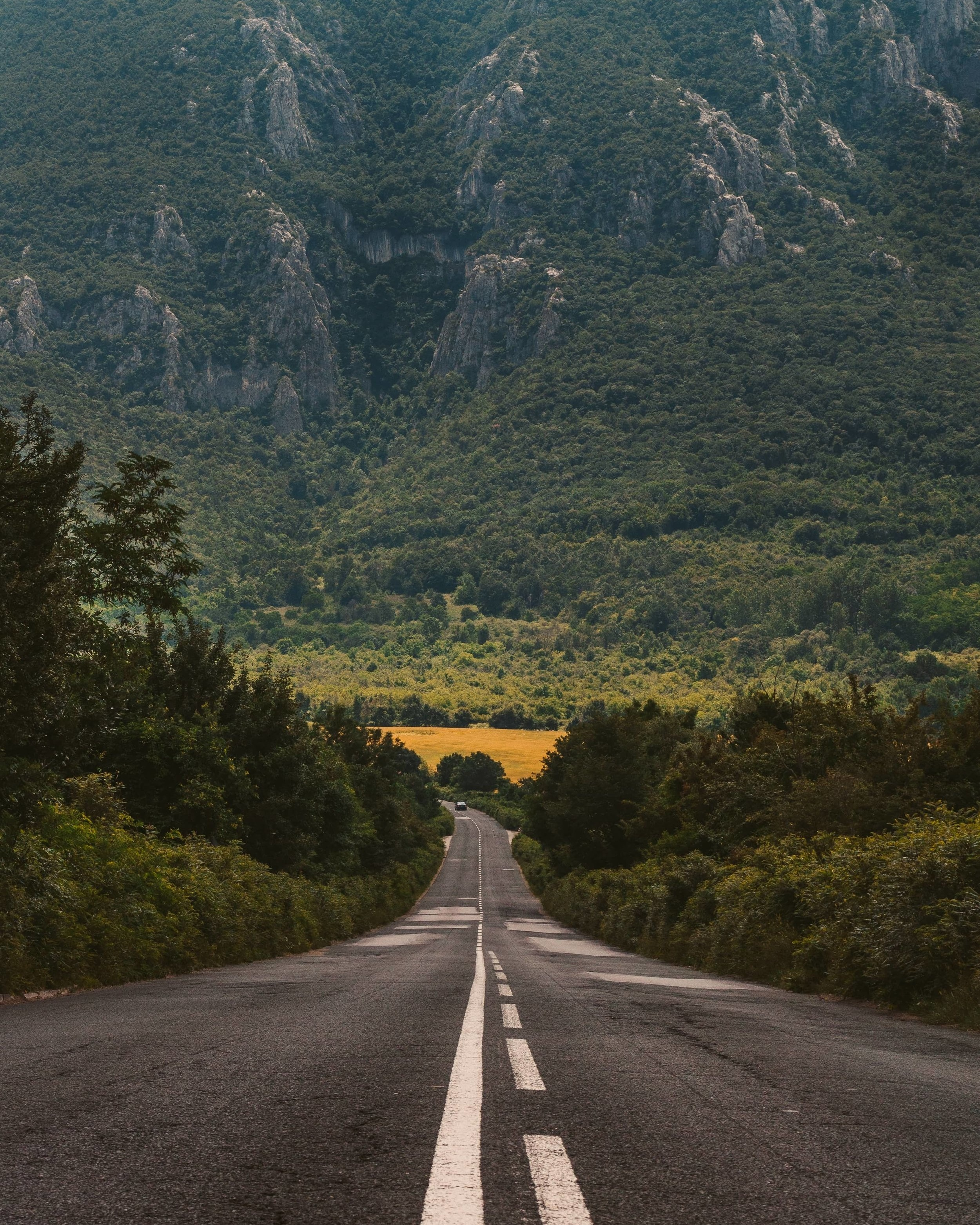 Road in Bulgaria. Photo by  Evgeni Evgeniev  on  Unsplash