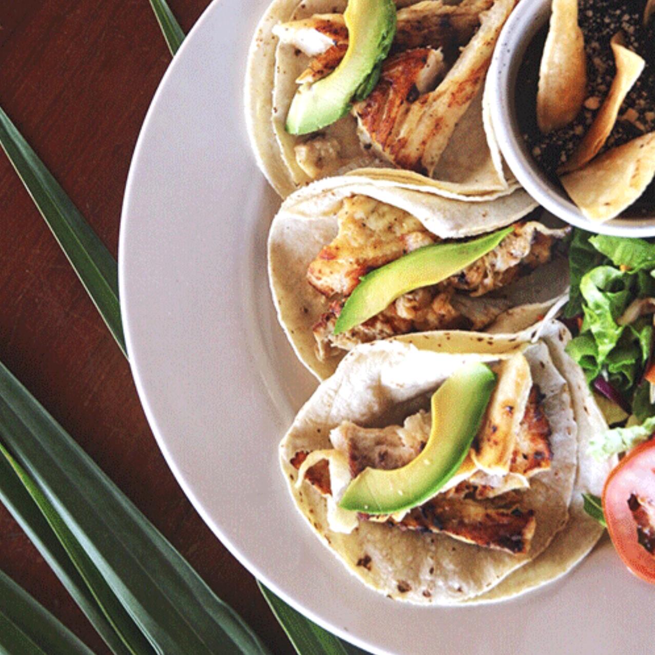 lunch - ● grilled fish● grilled chicken salad● fajitas● gazpacho● chicken tostadas● chicken tacos● curry salad