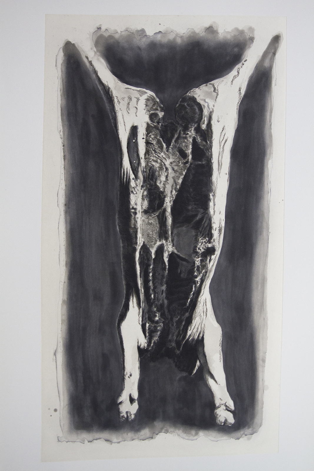 Carcass (Monochrome)