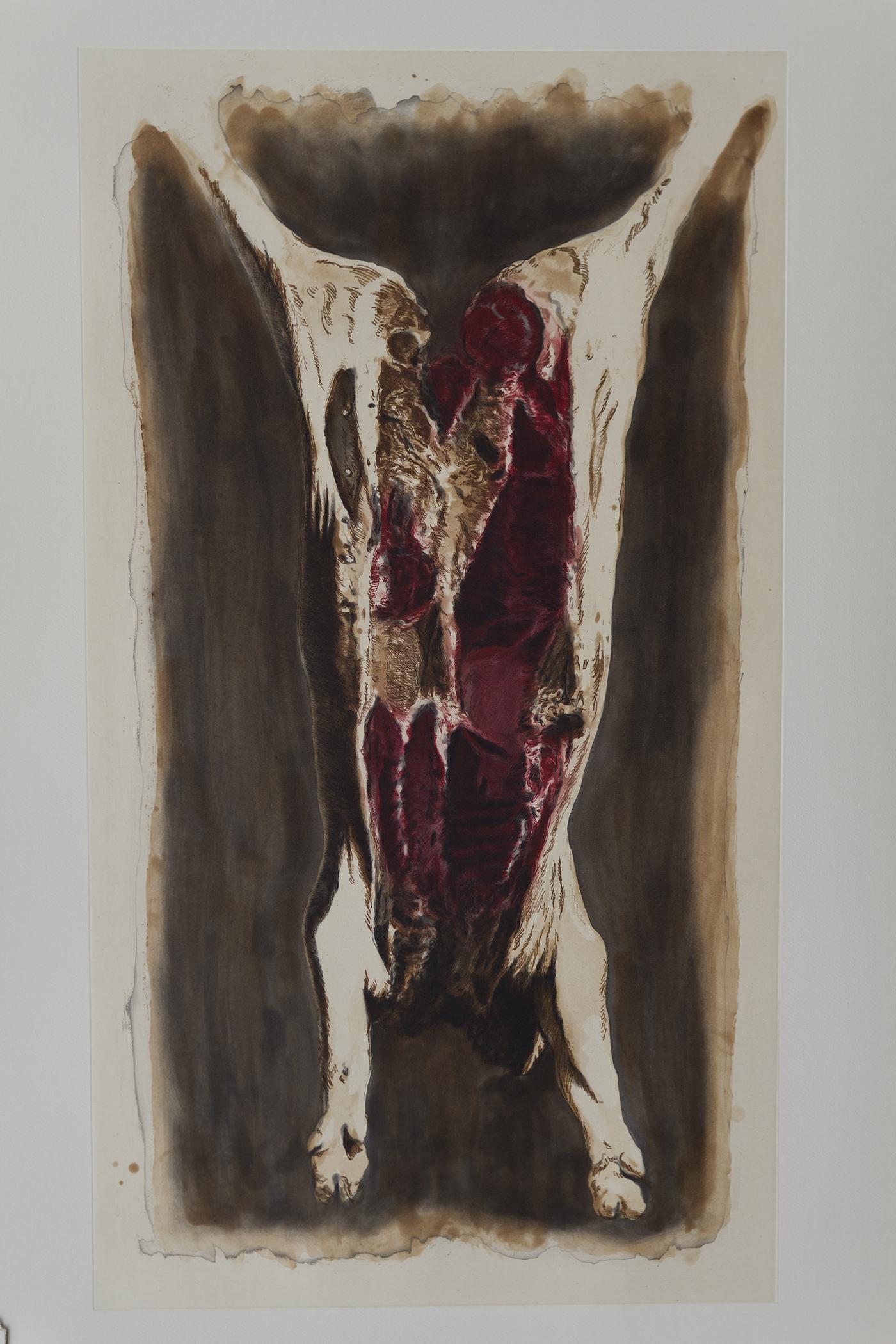 Carcass (color)