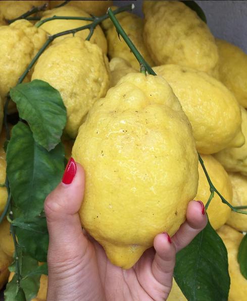 sandy-ley-lemon-in-hand-amalfi-coast-italy