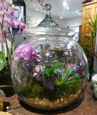 Terry Furuta Terrarium Globe