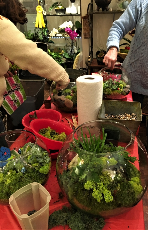 Private terrarium class is perfect for a group