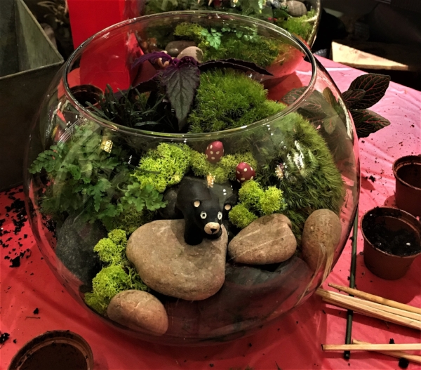 Terrarium classes themed for your group