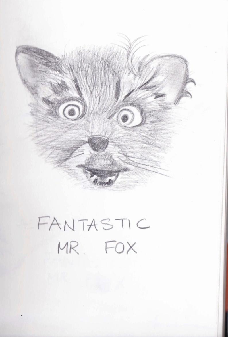 Fantastic Mr Fox sketches.jpg