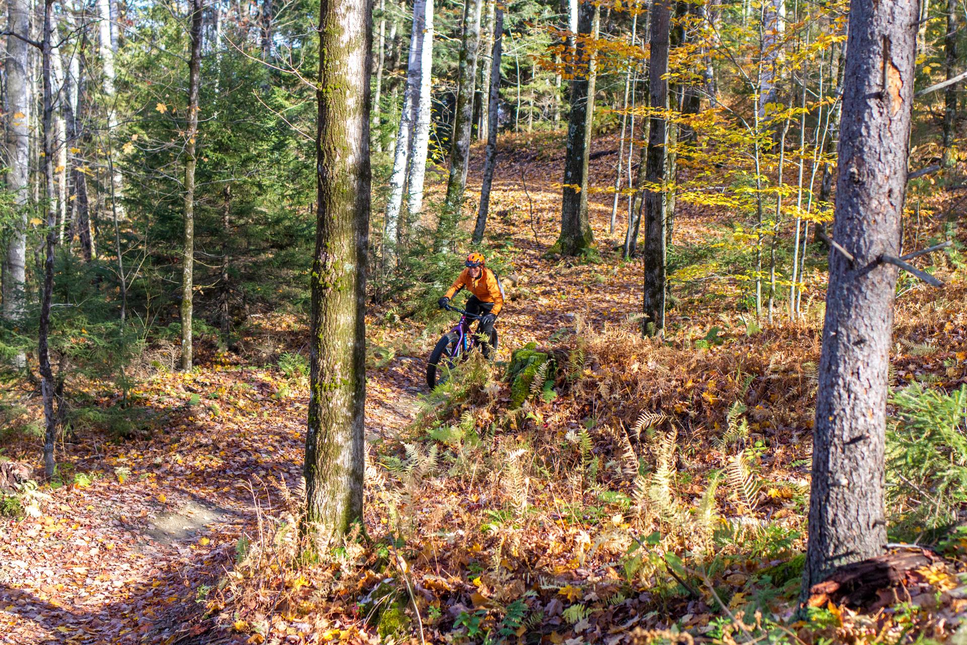2016-10-22-24-JA-snoliage-ride-scenics0013-2.jpg