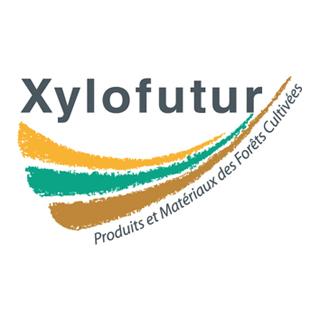 logo_xylo_tailleSiteWeb.jpg