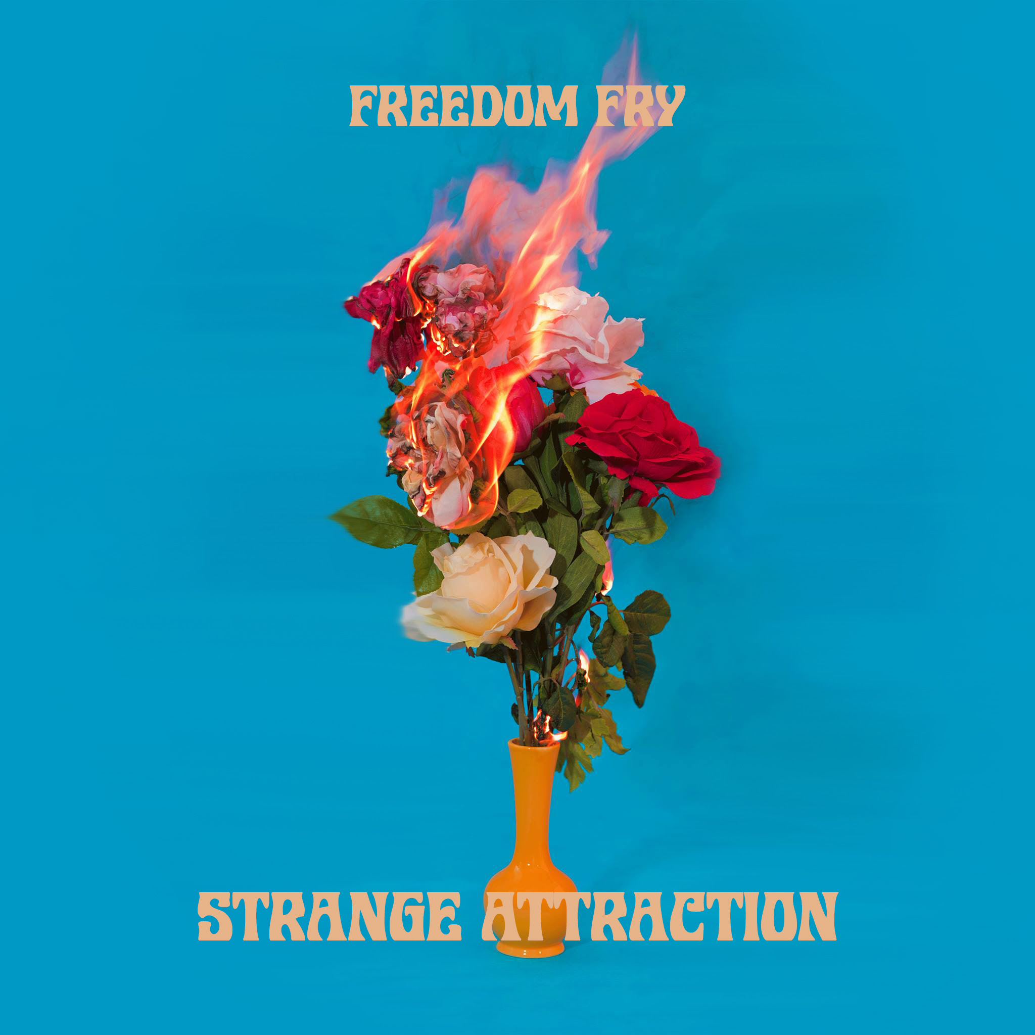 Freedom Fry Strange Attraction EP.jpg
