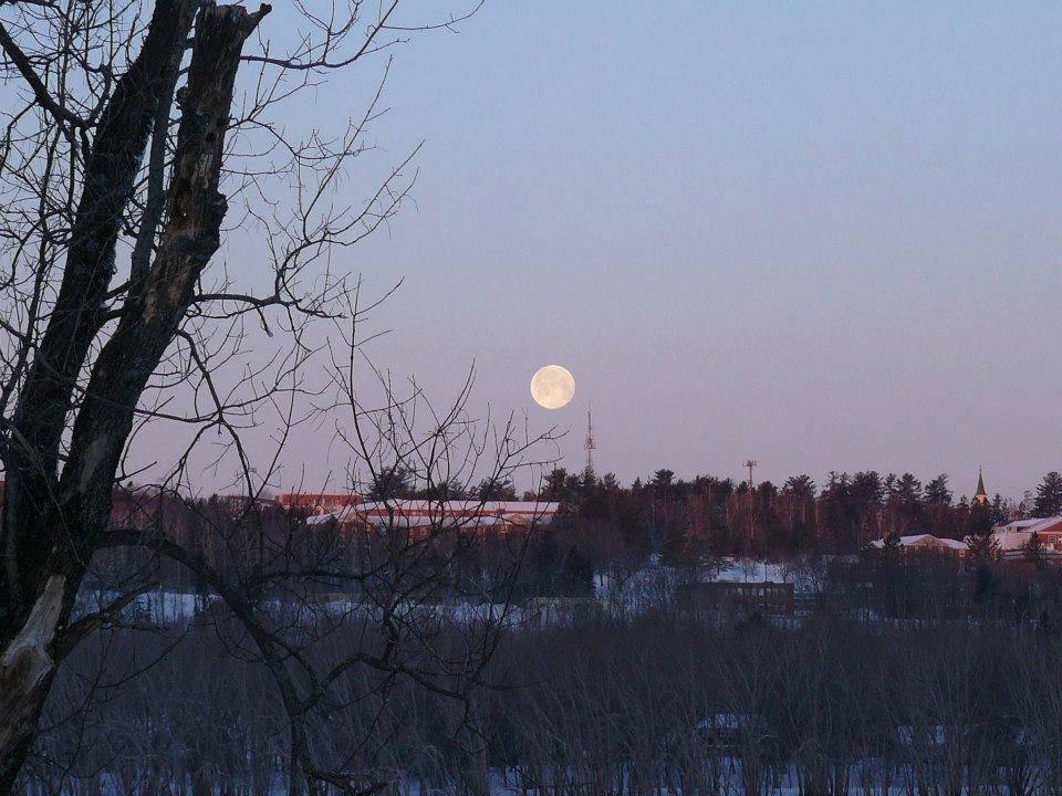 Lunar Skis.jpg