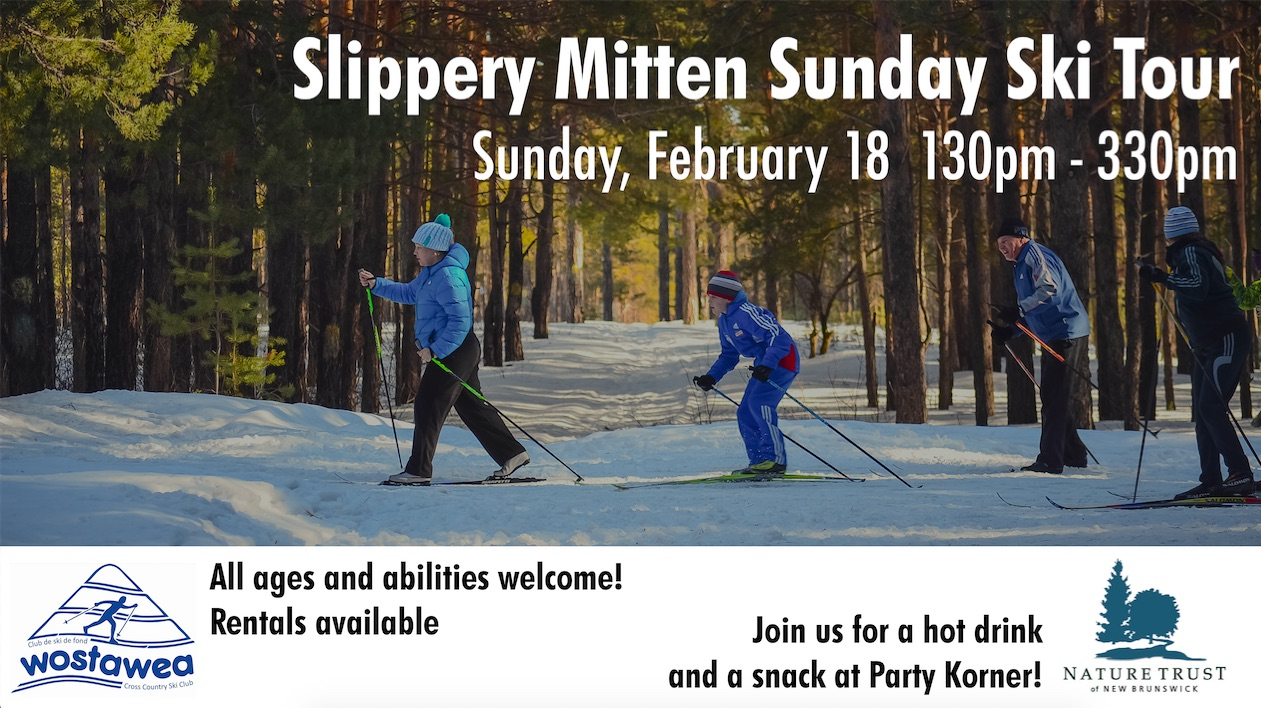 Slippery Mitten Sunday Ski Tour.jpg