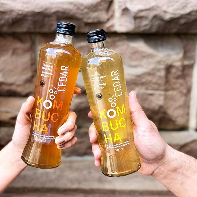 Win a kombucha for you and your #boochbuddy! Simply follow us and tag your best #boochbuddy! ——————————————————————— *Only open to Canadian residents. Per Instagram rules, this promotion is in no way sponsored, administered, or associated with Instagram, Inc. By entering, entrants confirm they are 18+ years of age, release Instagram of responsibility, and agree to Instagram's terms of use. Winners will be picked from pool of Instagram and Facebook entries by random number generator. Contest runs now until April 12,2019.. Winners will be announced by April 15, 2019.  #coldpressedjourney #cedarjuice #digestivehealth #healthygut #kombucha #kombuchalove #probiotic #fermented #healthylifestyle #healthspo #balancedlife #mindbodyconnection #goodhabits