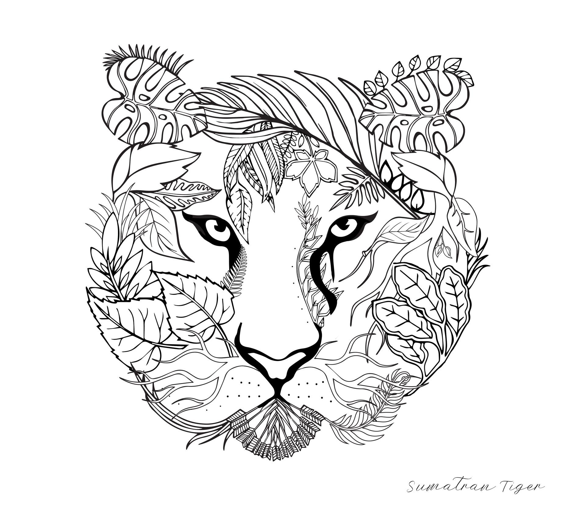 Tiger_Coloringpage.jpg
