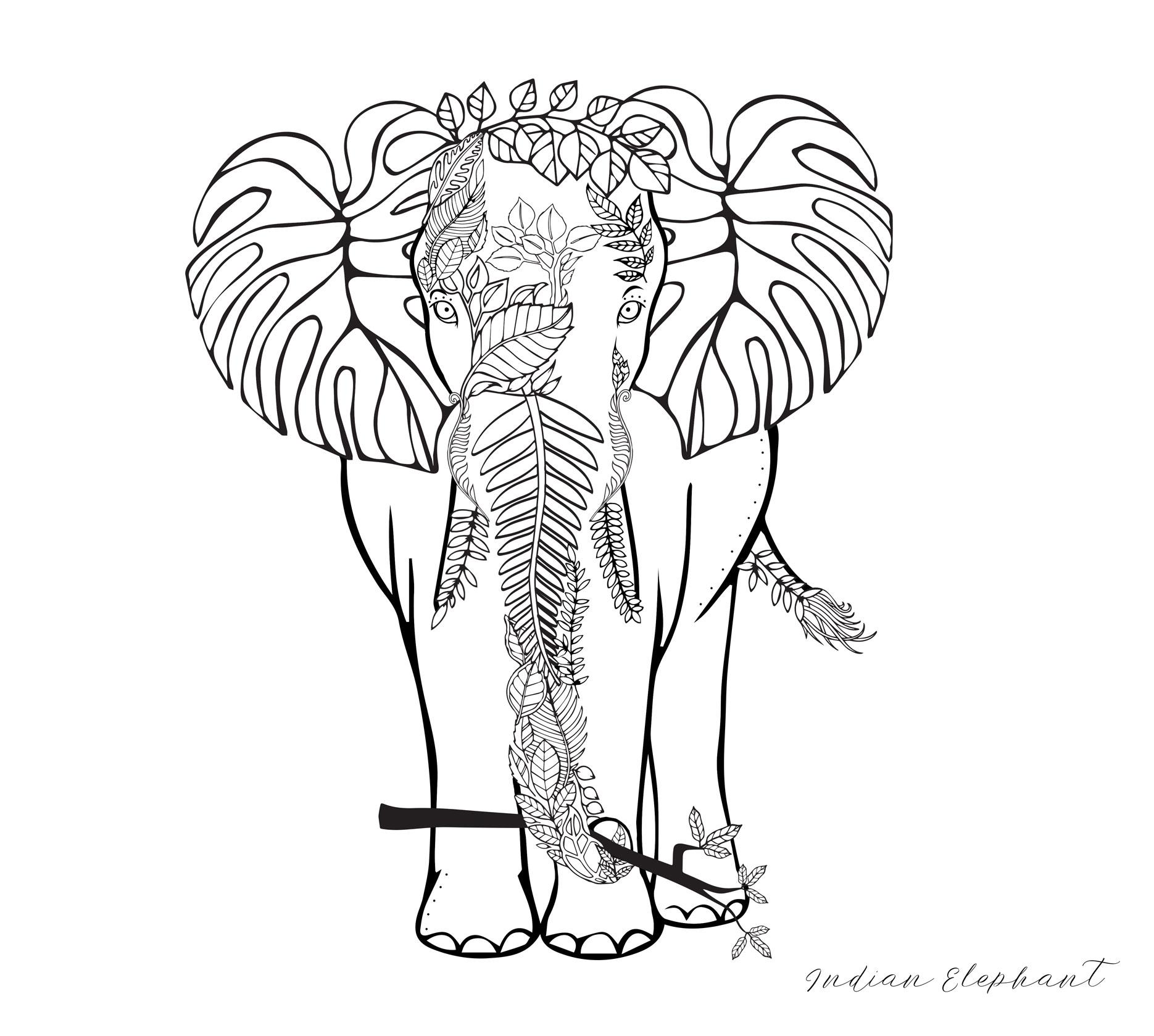 Elephant_Coloringpage.jpg