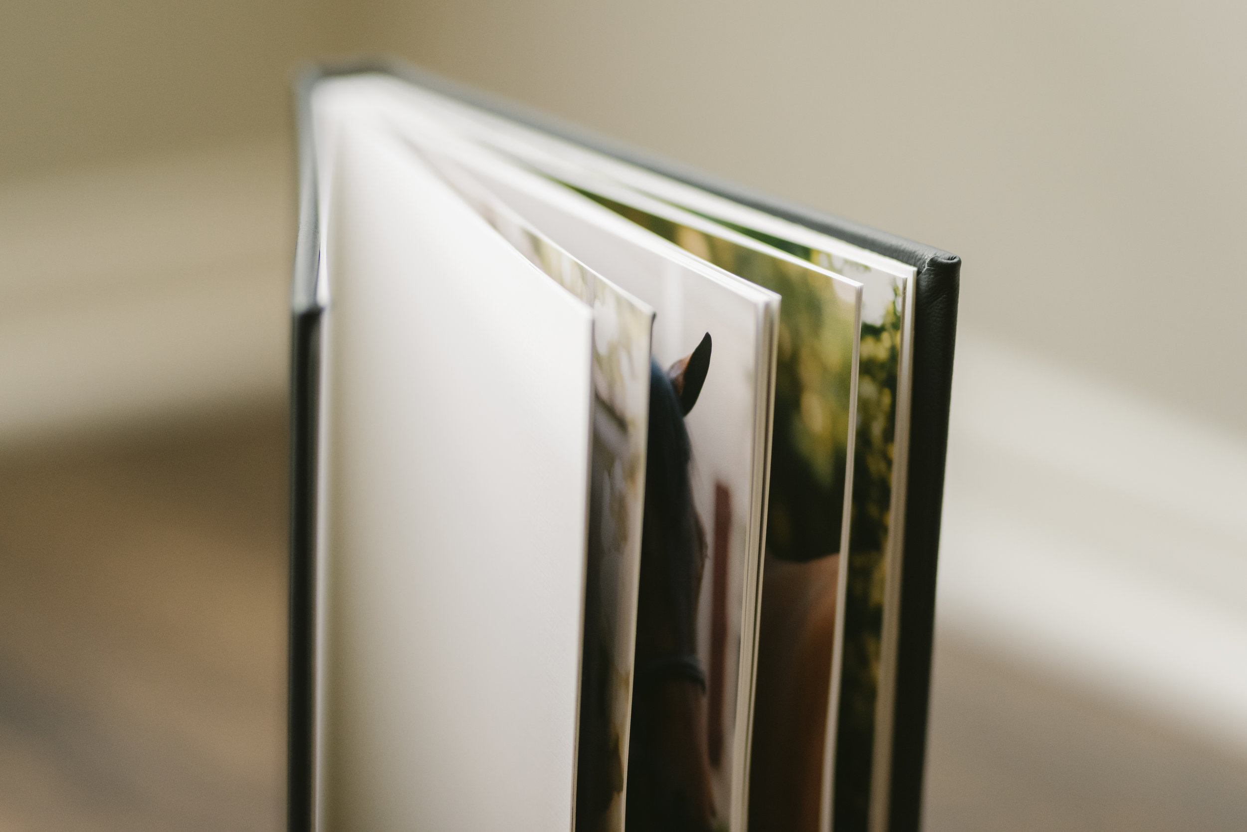 albumbook-5.jpg