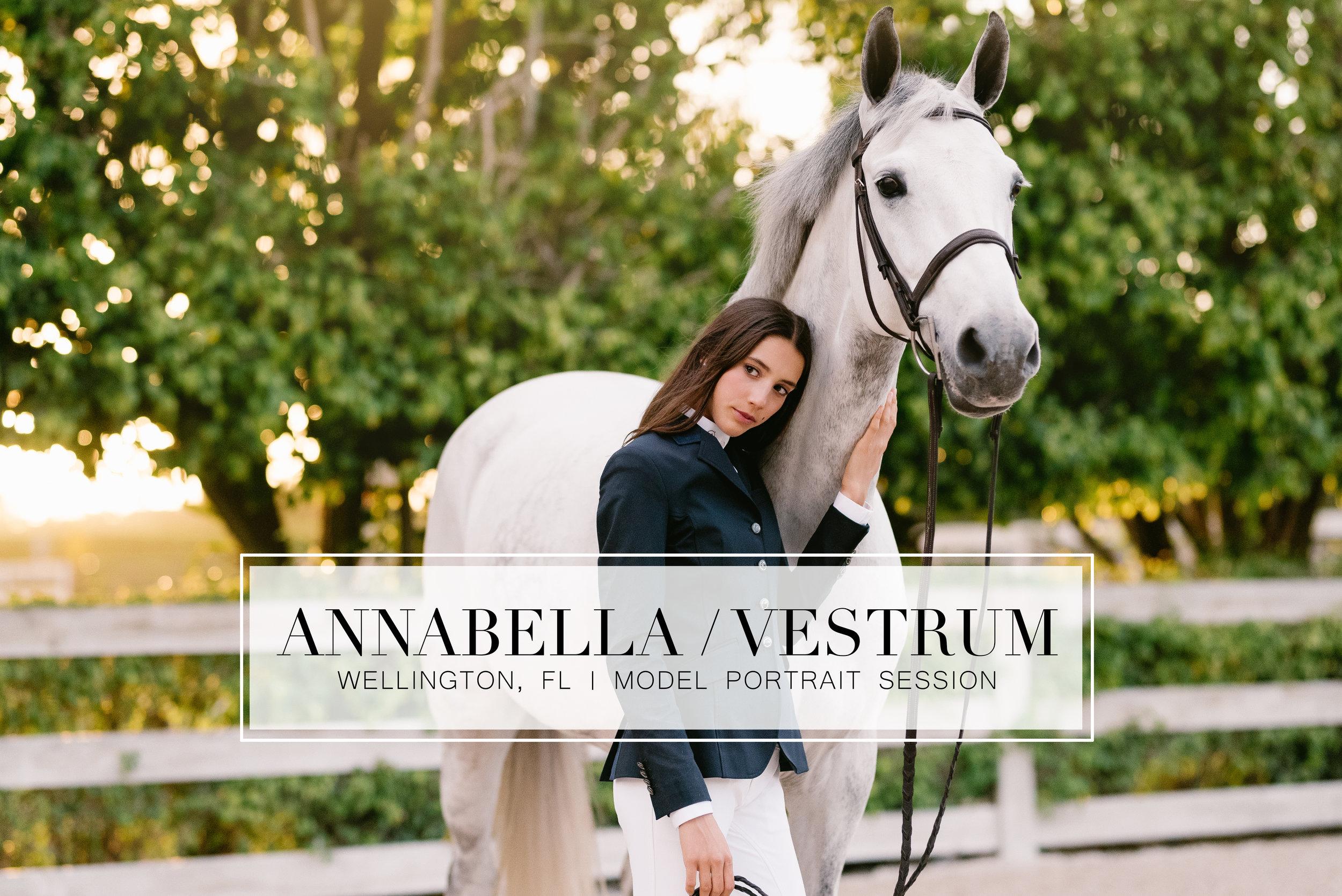 annabellavestrum_header.jpg