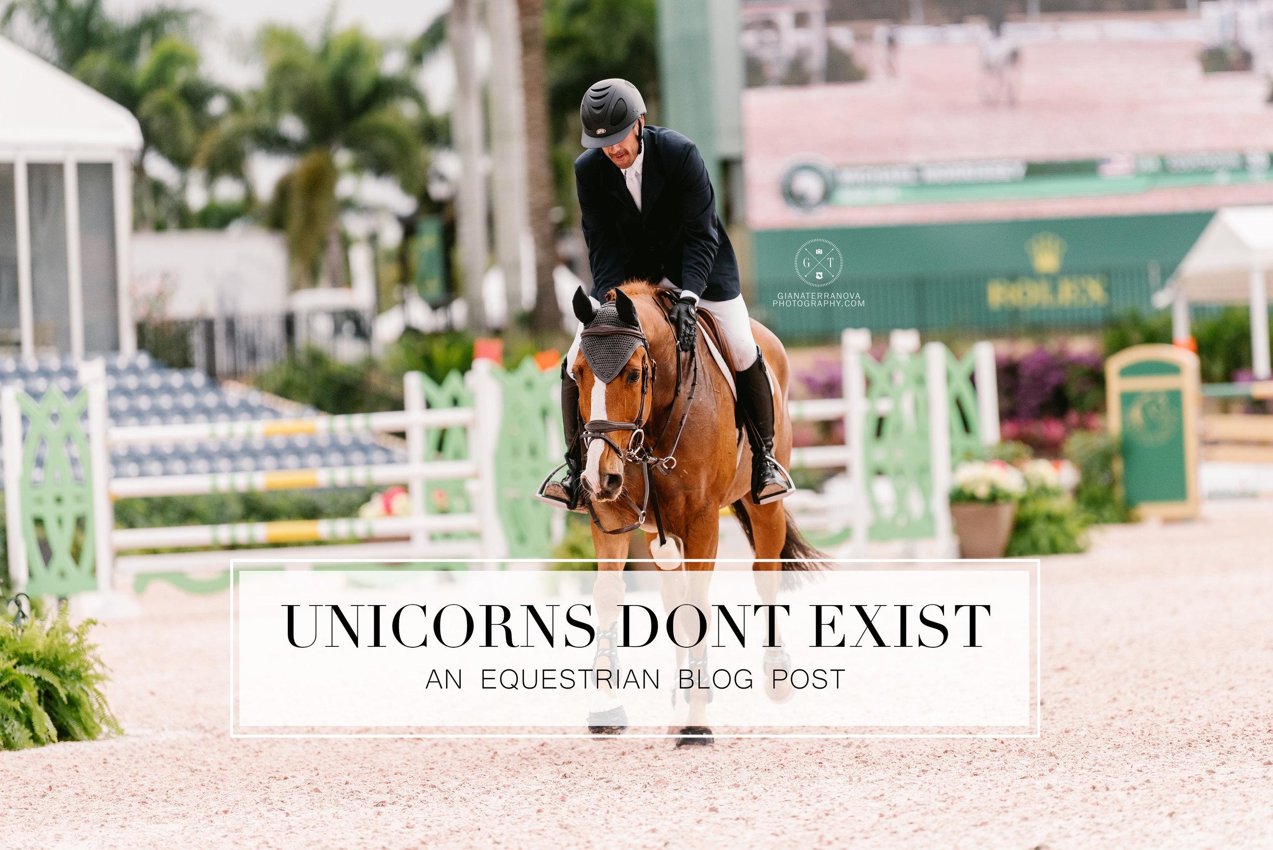 unicornsblog.jpg