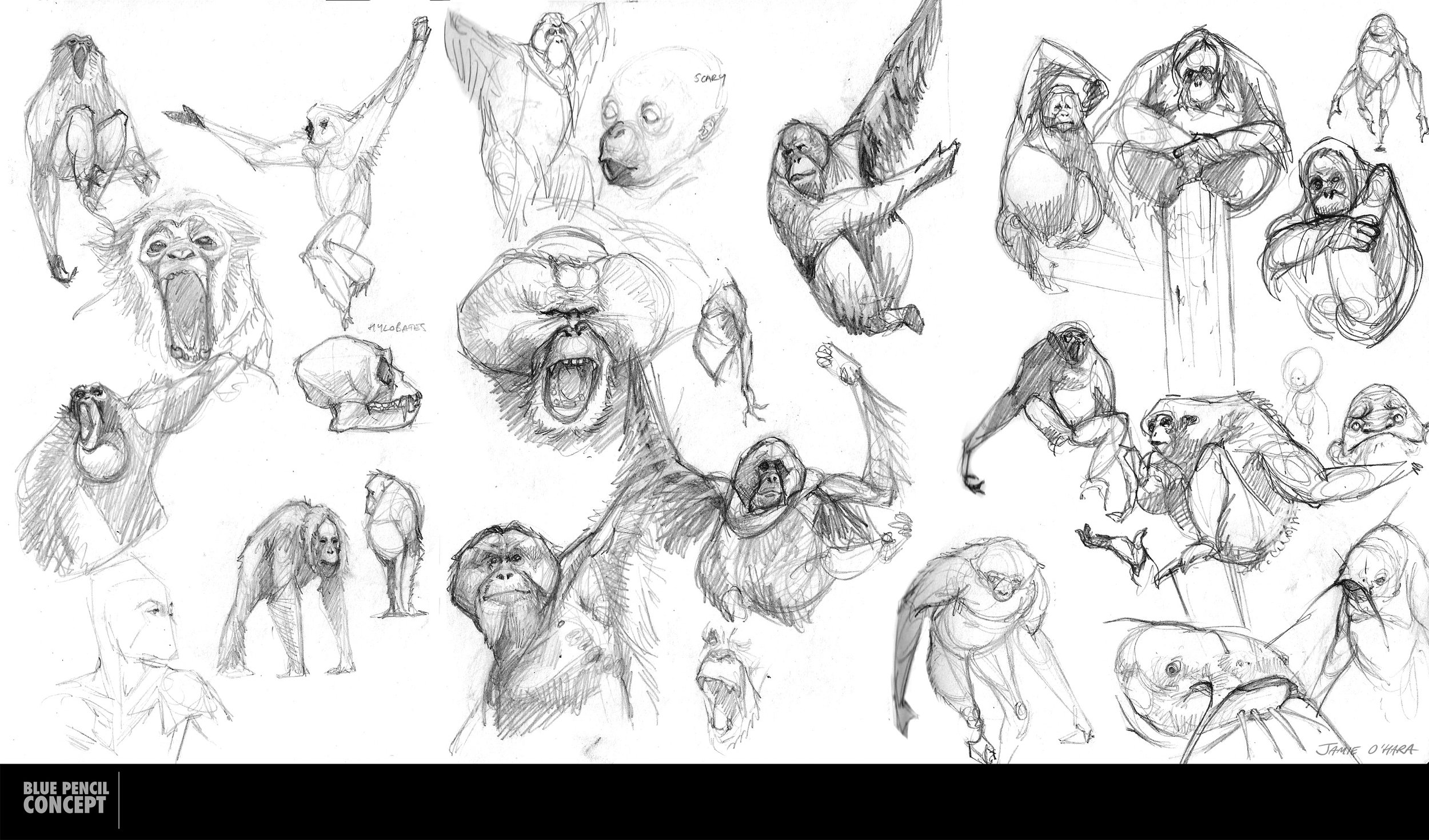 sketches_16_03.jpg