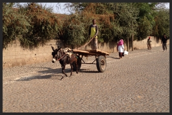 Sharing the road to Addis Ababa