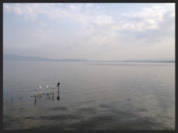 Lake Hawassa, South of Addis Ababa