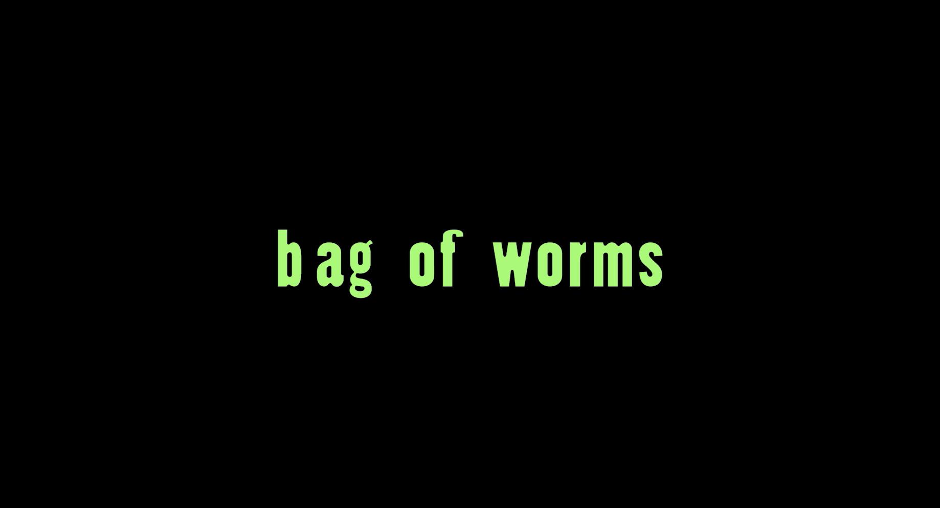 BagofWorms.png