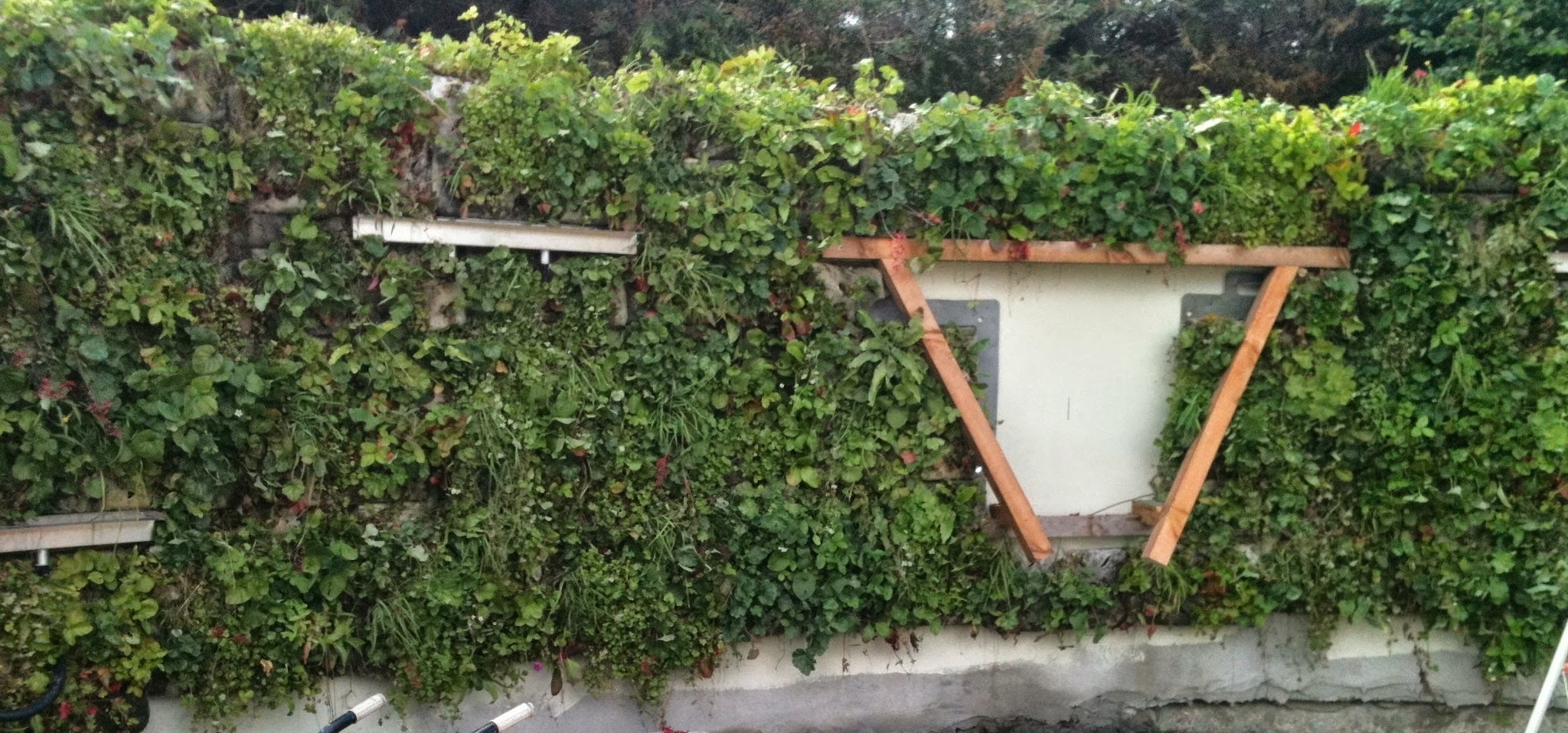 flexi-panel living wall system