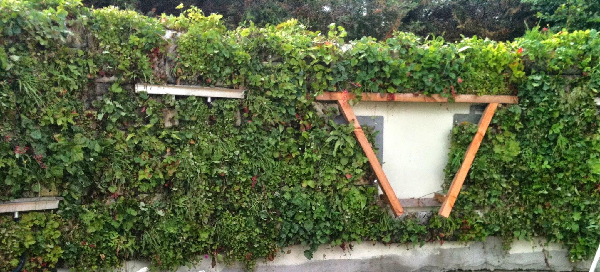 Curved Living wall Design.jpg