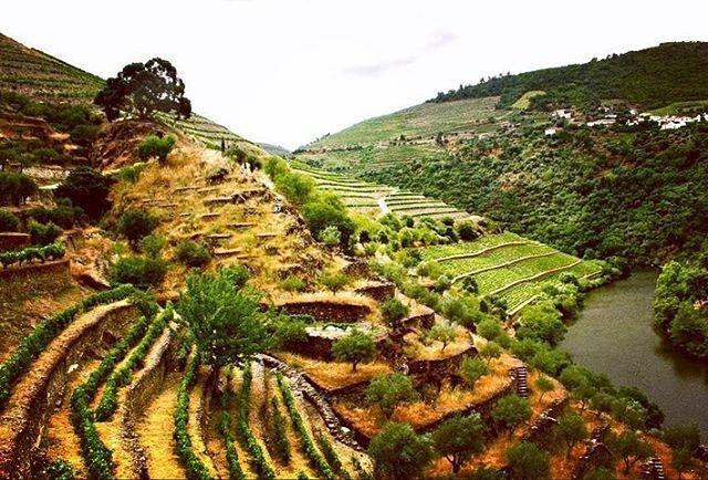 The Douro.