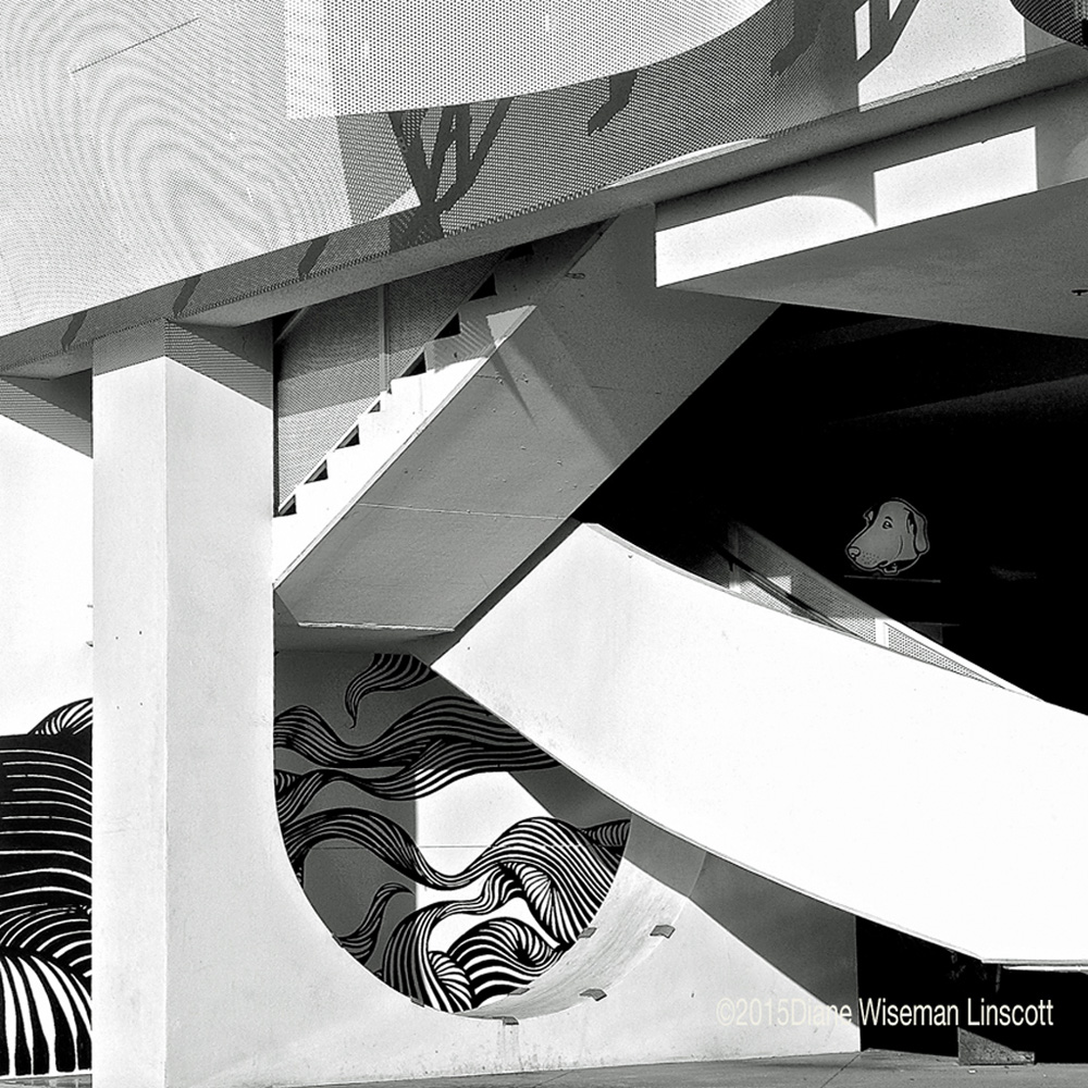"""Street Abstracts: """"Composition in BW"""" - SDT"""