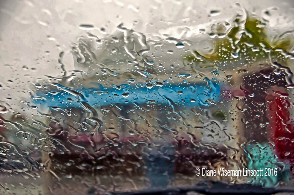 """The Breeze in Rain"""