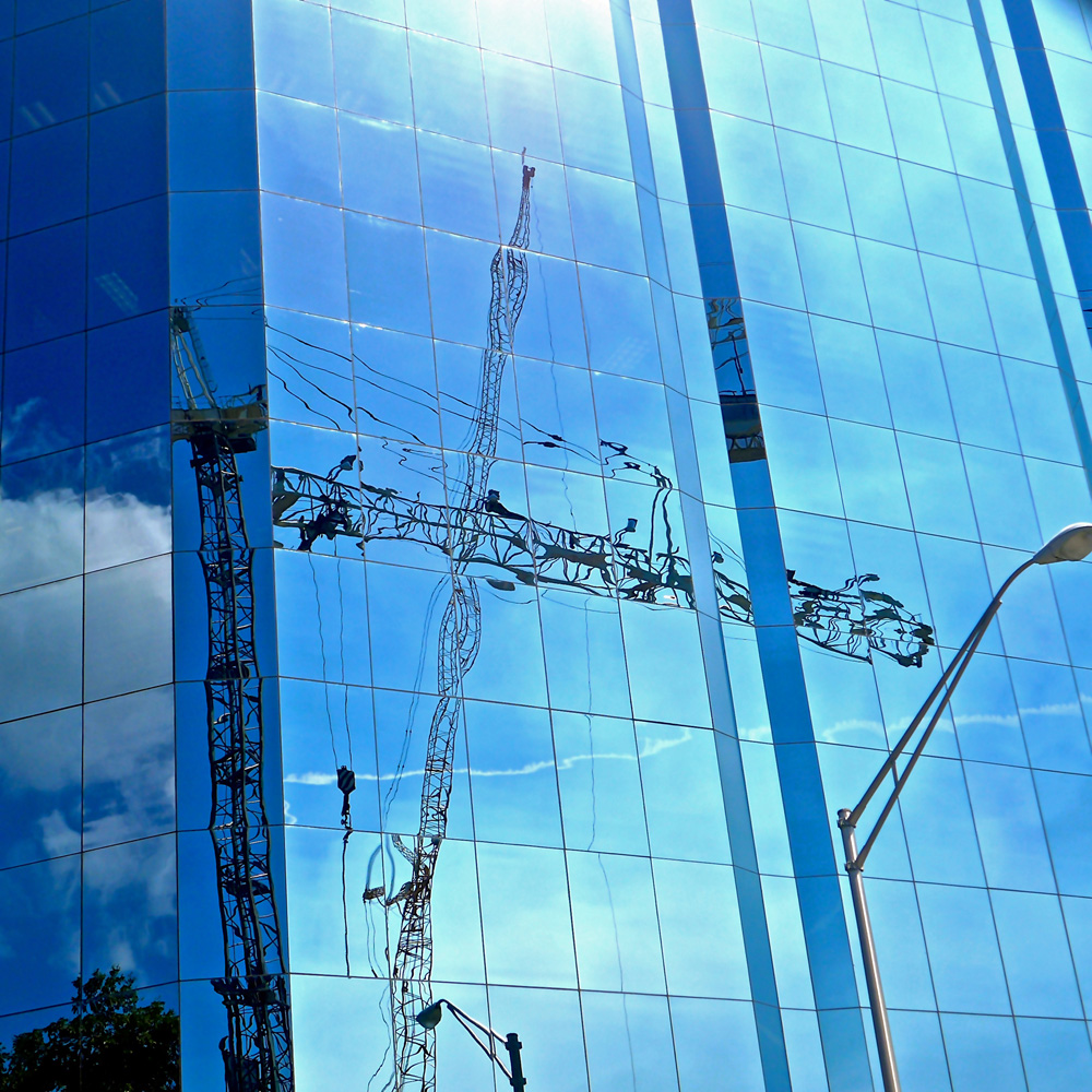 """Cranes Over Sarasota: Blue Reflection"""