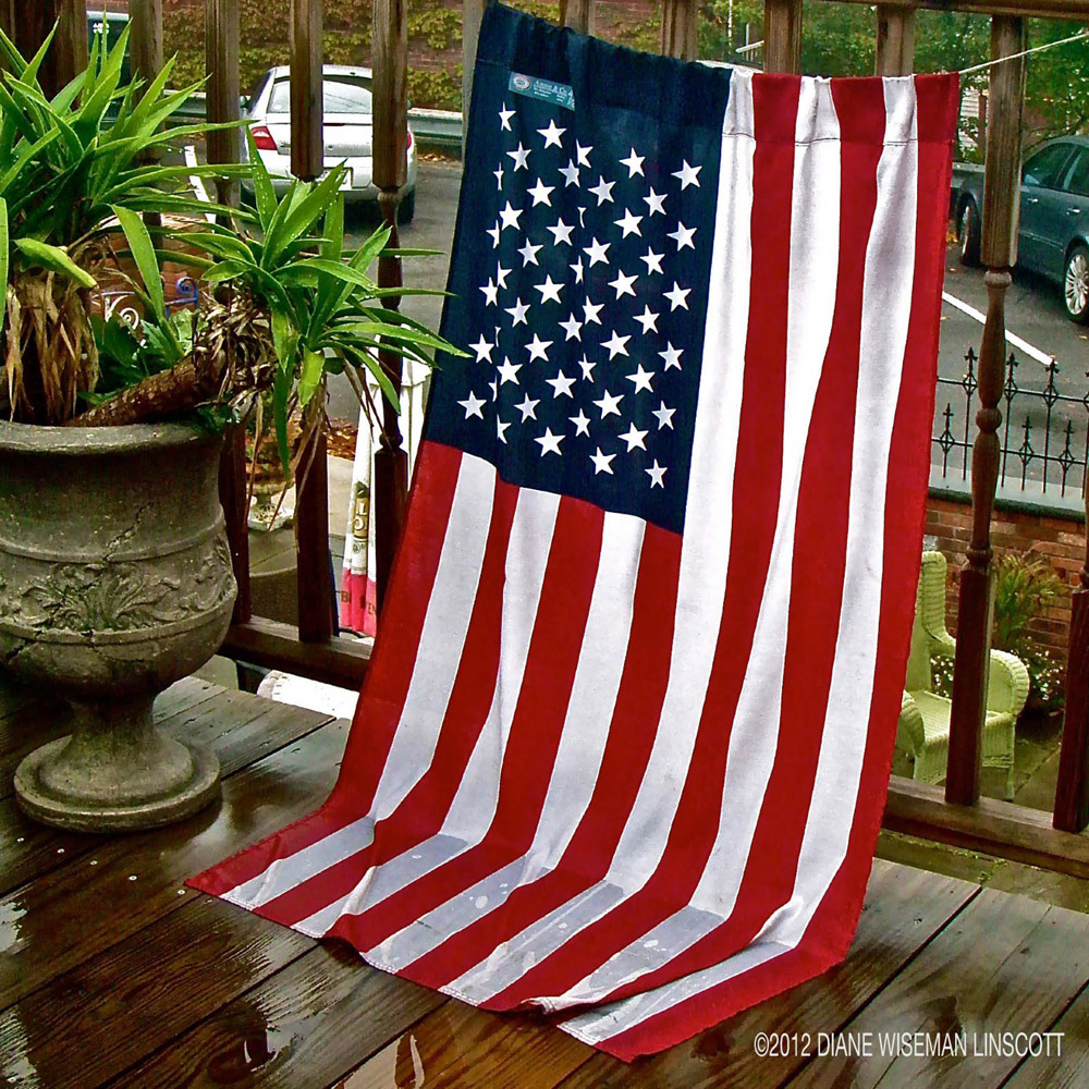 """""""Telltales: Neglected stars and stripes"""""""