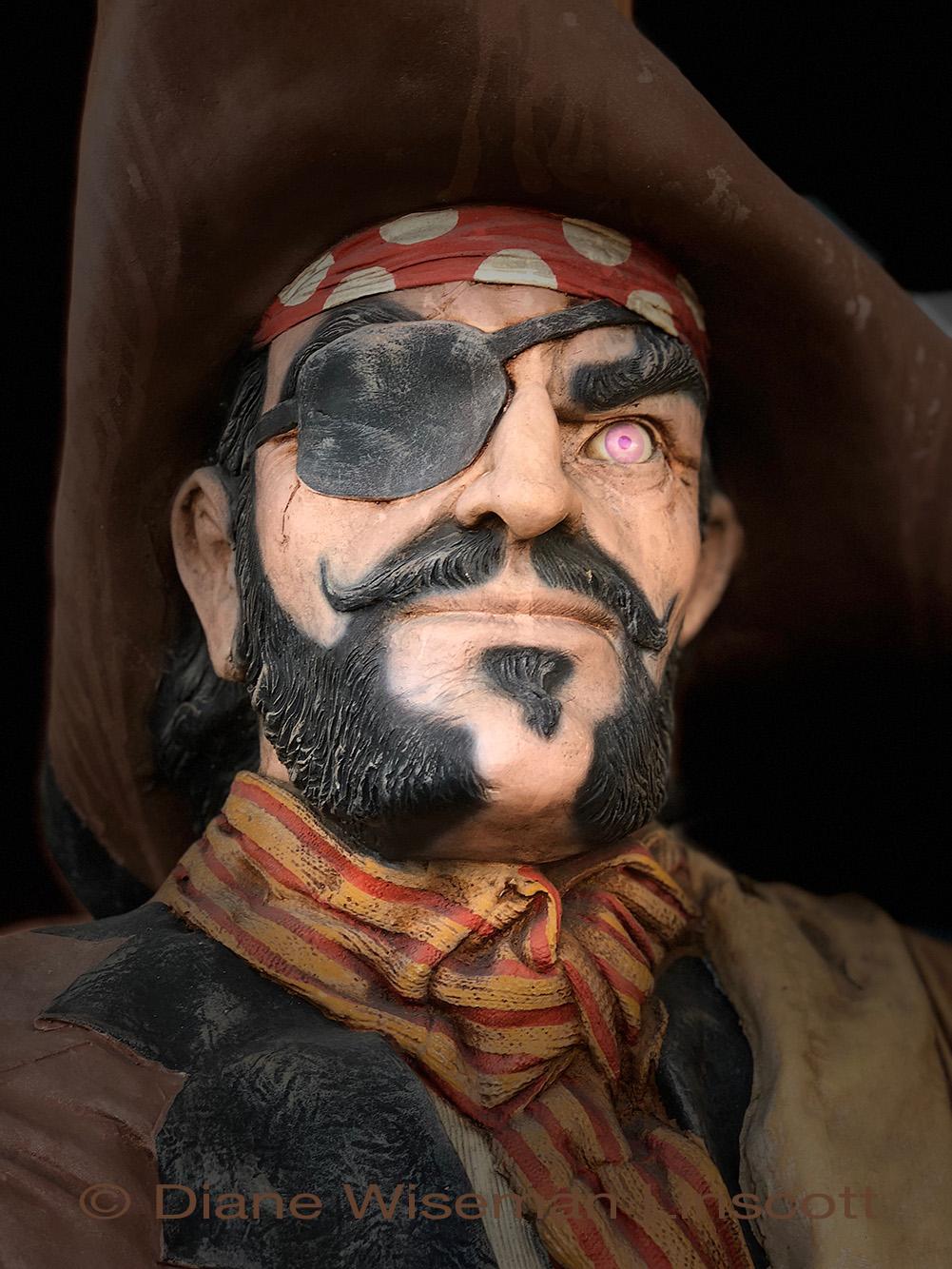 """Pink Eye Pirate"""