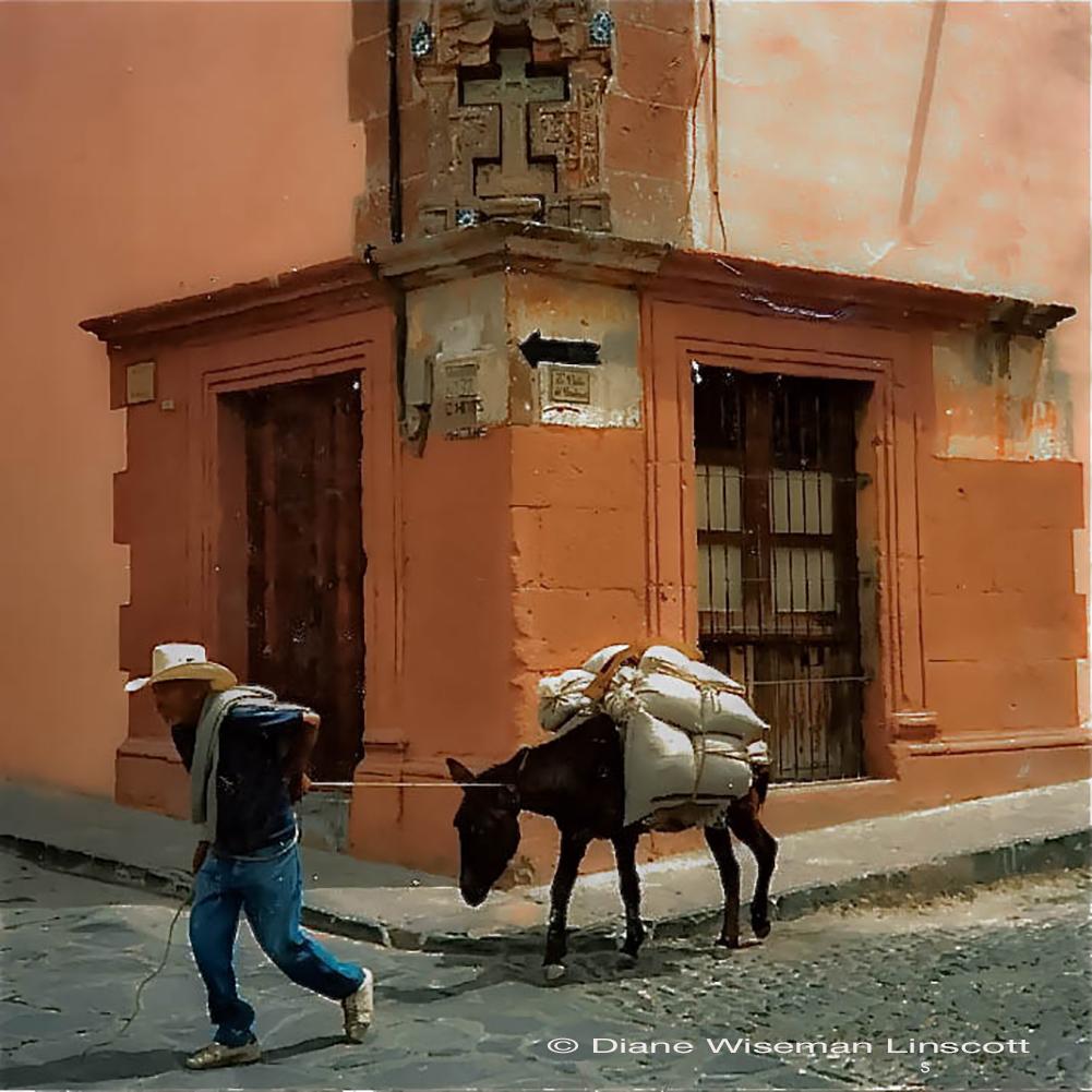 """San Miguel de Allende: """"Man and Burro"""""""
