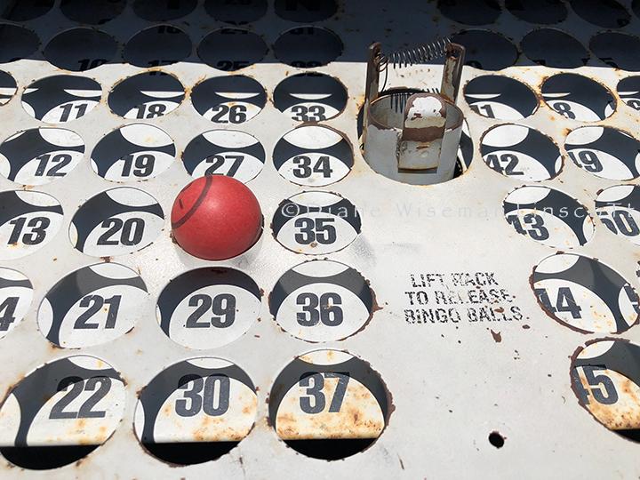 """Bingo"", © Diane Wiseman Linscott"