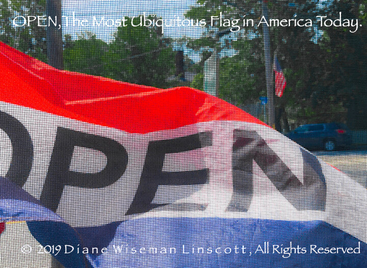 OPEN, The Most Ubiquitous Flag In America Today, © Diane Wiseman Linscott