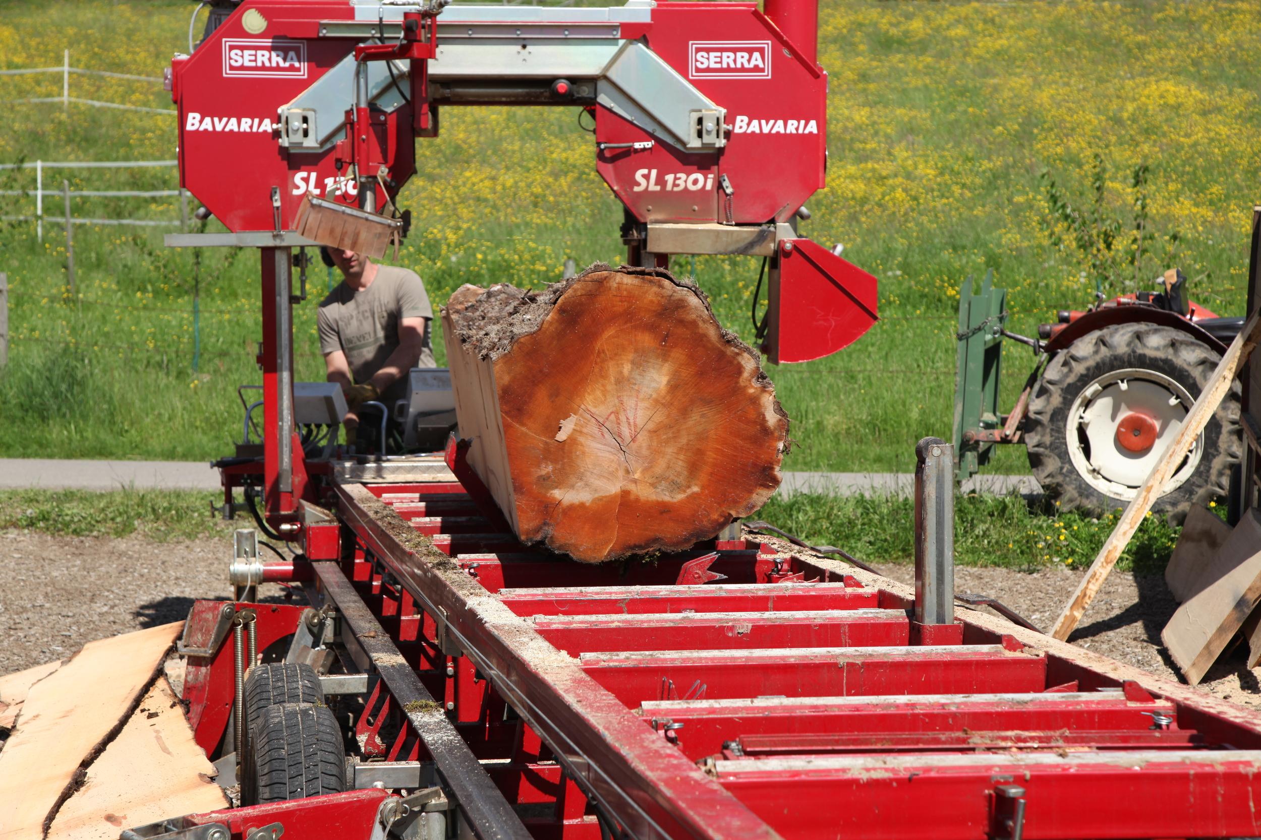 Birnbaum auf der mobilen Säge