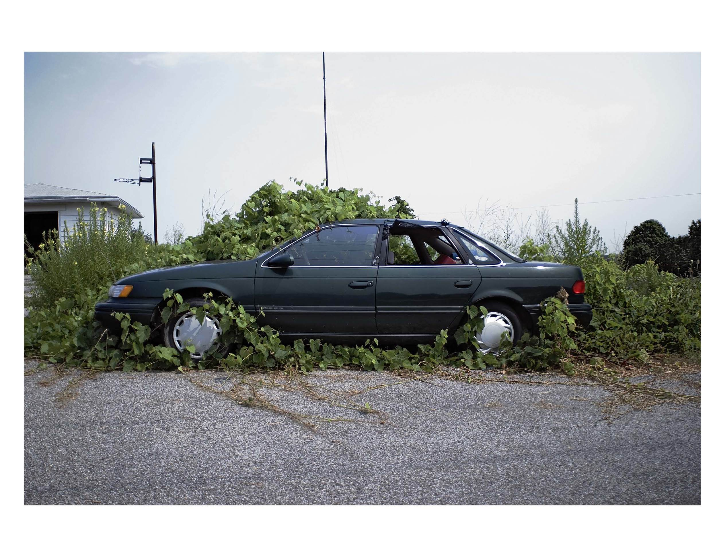 Green Ford  | Iroquoia, 2007