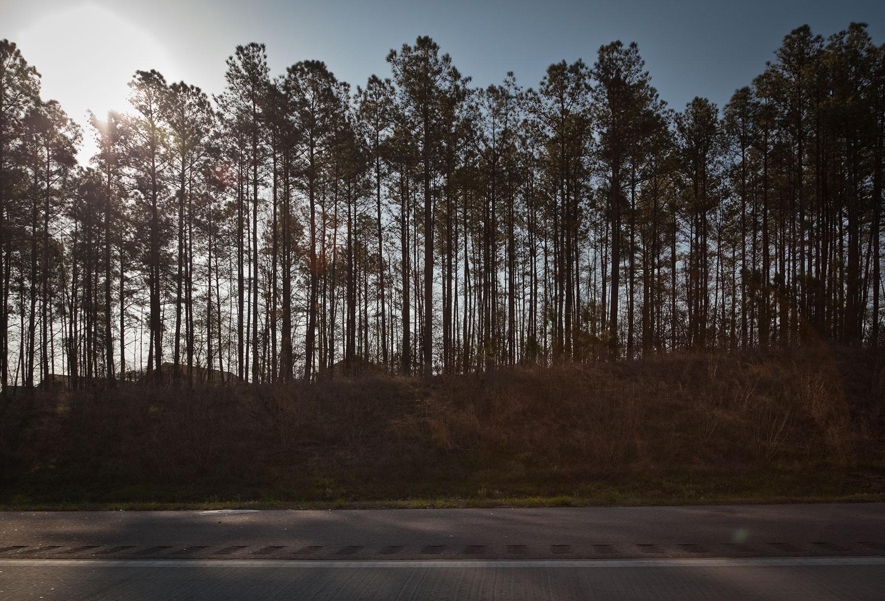 Highway 264, North Carolina