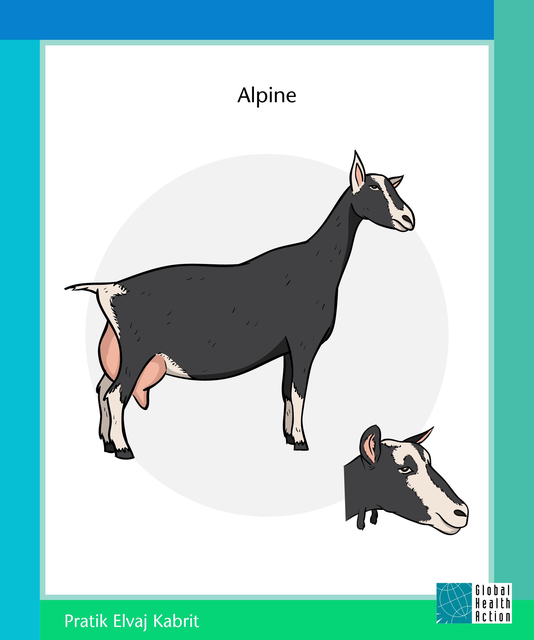 Goat Program Poster 2