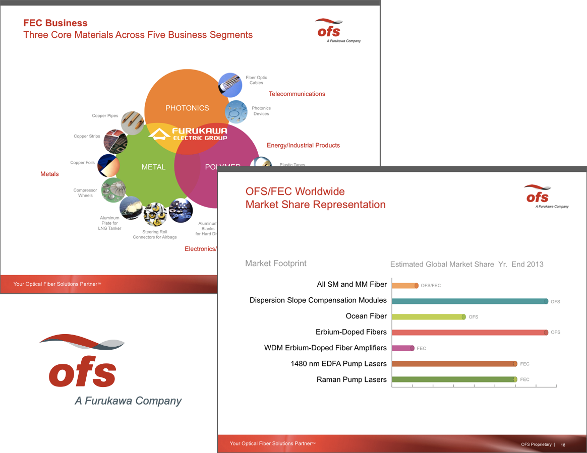 Selected Screen Shots of the OFS Presentation