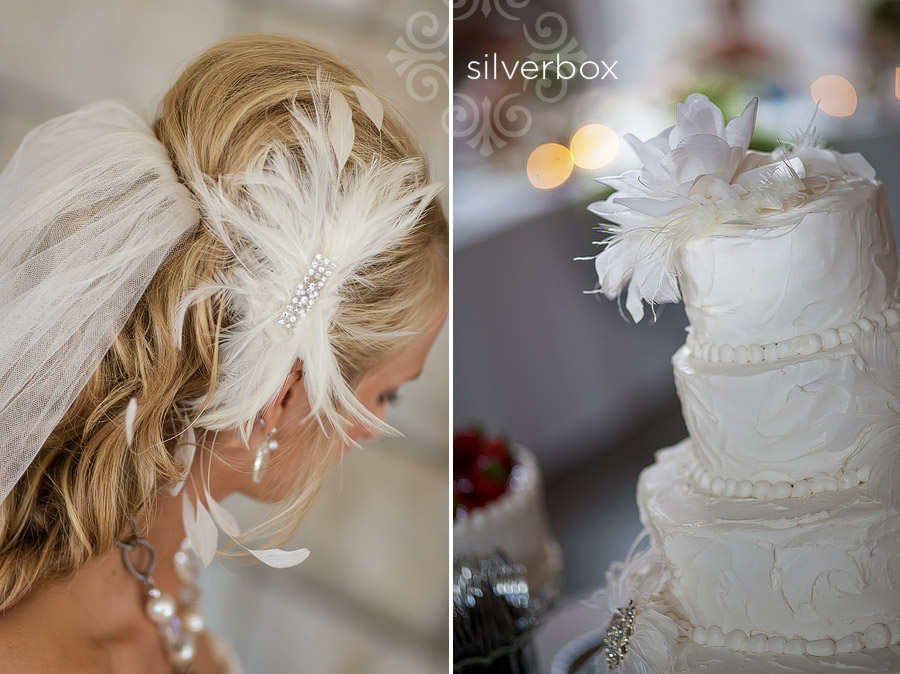 feathers by SilverBox Photographers