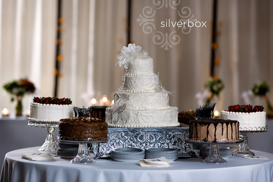 Delicious Cakes by SilverBox Photographers