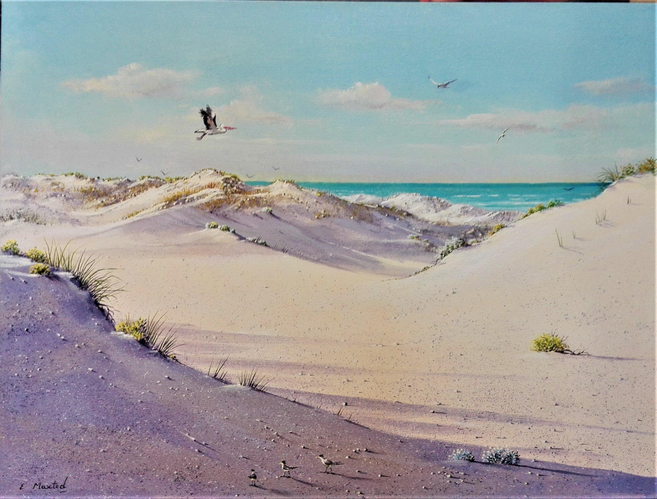 Sand Dunes at Goolwa