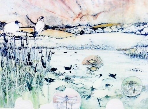 Sacred Ibis and the Waterboatman