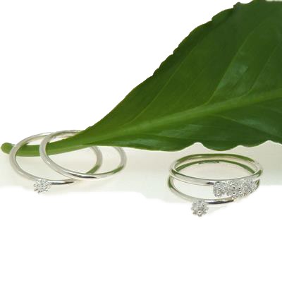 Wattle Bud Rings