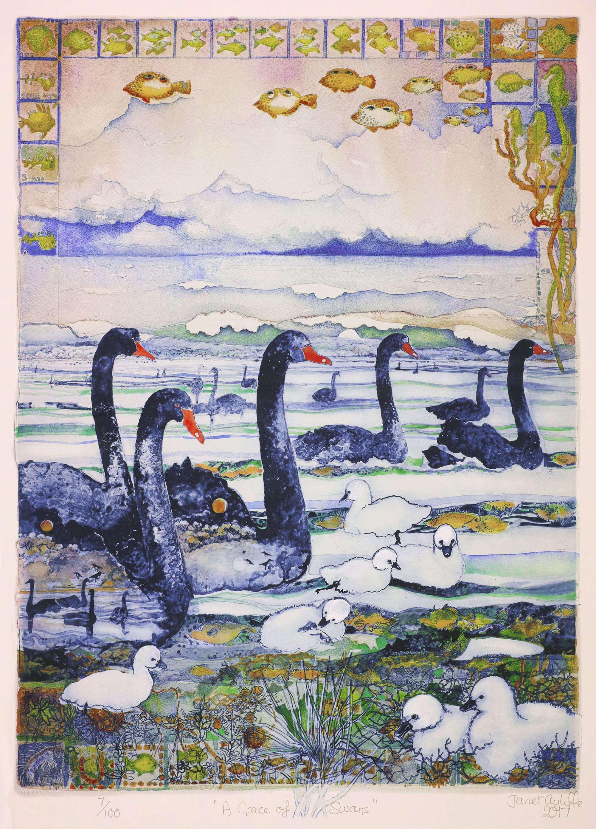 A Grace of Swans