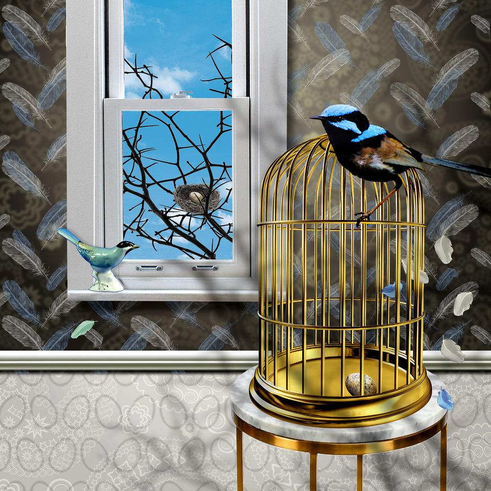 Bluebird_x_midrez.jpeg