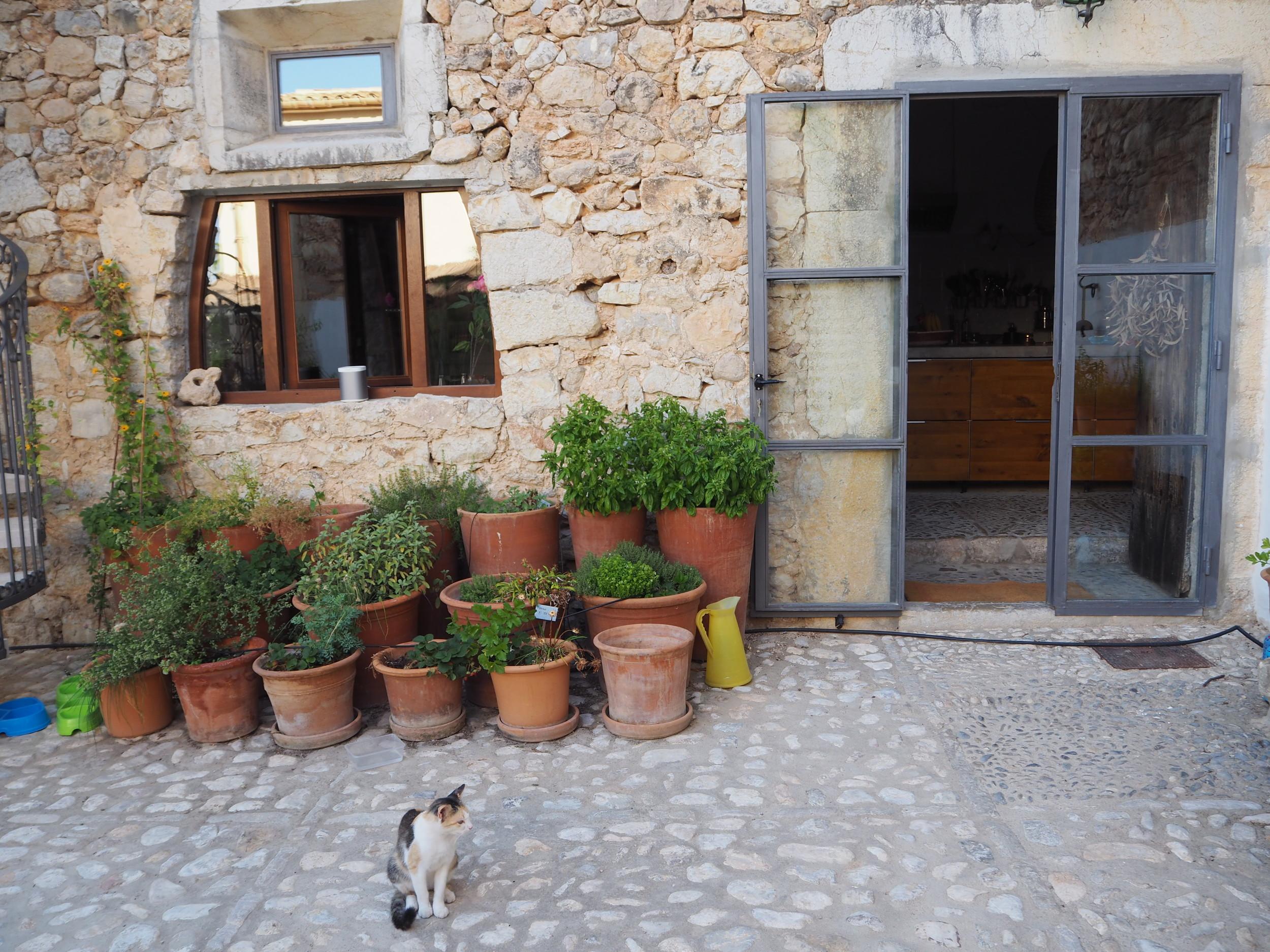 The outside courtyard at The pink Pepper Tree Hotel- Lloseta, Majoraca. A traditional Majorcan finca.